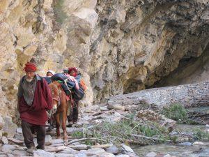 #dolpo #nepal #trekking #Westnepal